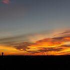Sonnenaufgang Branson Mo 01062015 von PicsbyJody