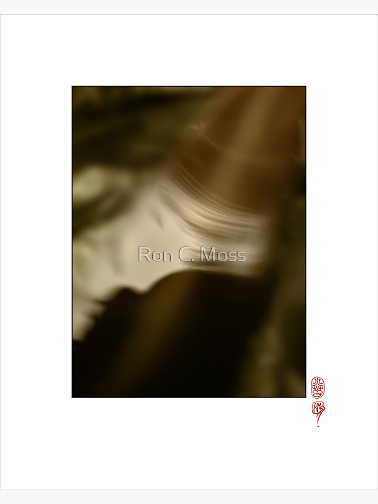 Leaf Spirit by ronmoss