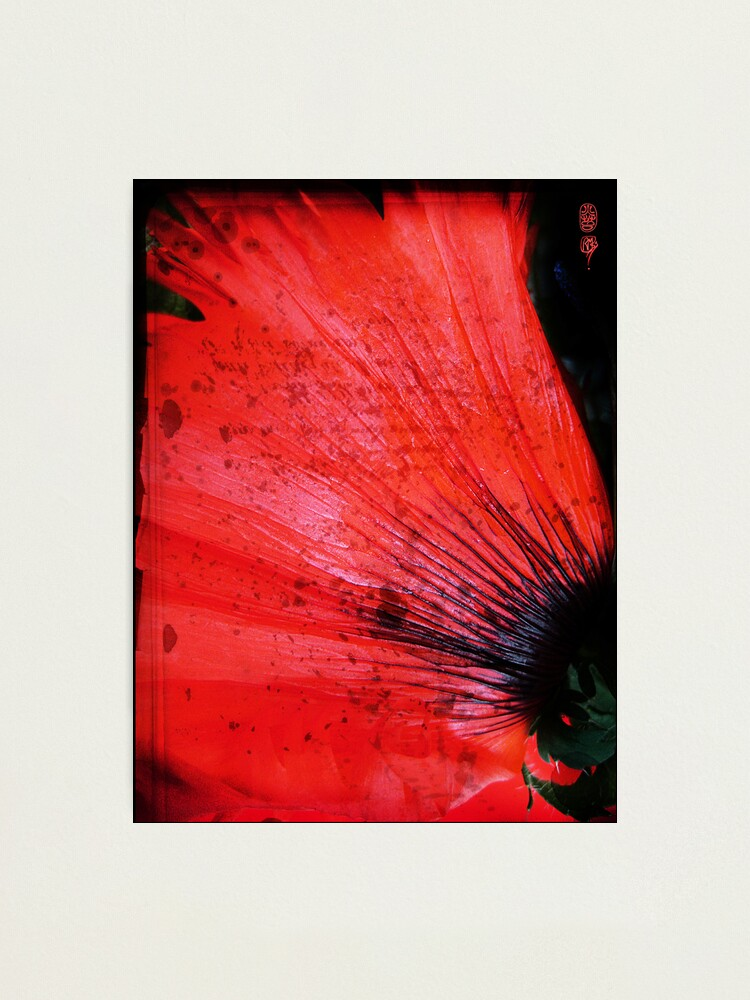 Alternate view of Book Flower Photographic Print