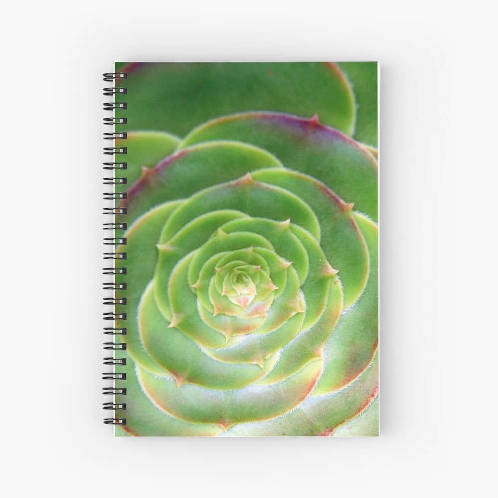 Unfurled Spiral Notebook