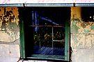 Window by Evita