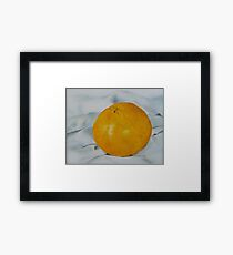 Juicy Tangerine Framed Print