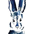 Blue Bunny by Elvedee