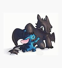 Stitch and toothless Photographic Print