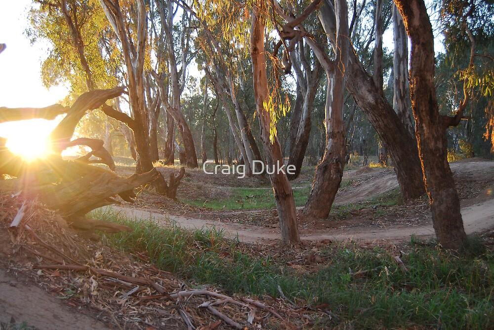 Trails at dawn by Craig Duke