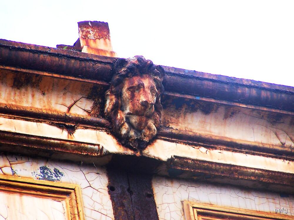 Sleeping Lion by eefy