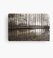 Marne Canal Metal Print