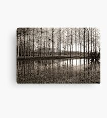 Marne Canal Canvas Print