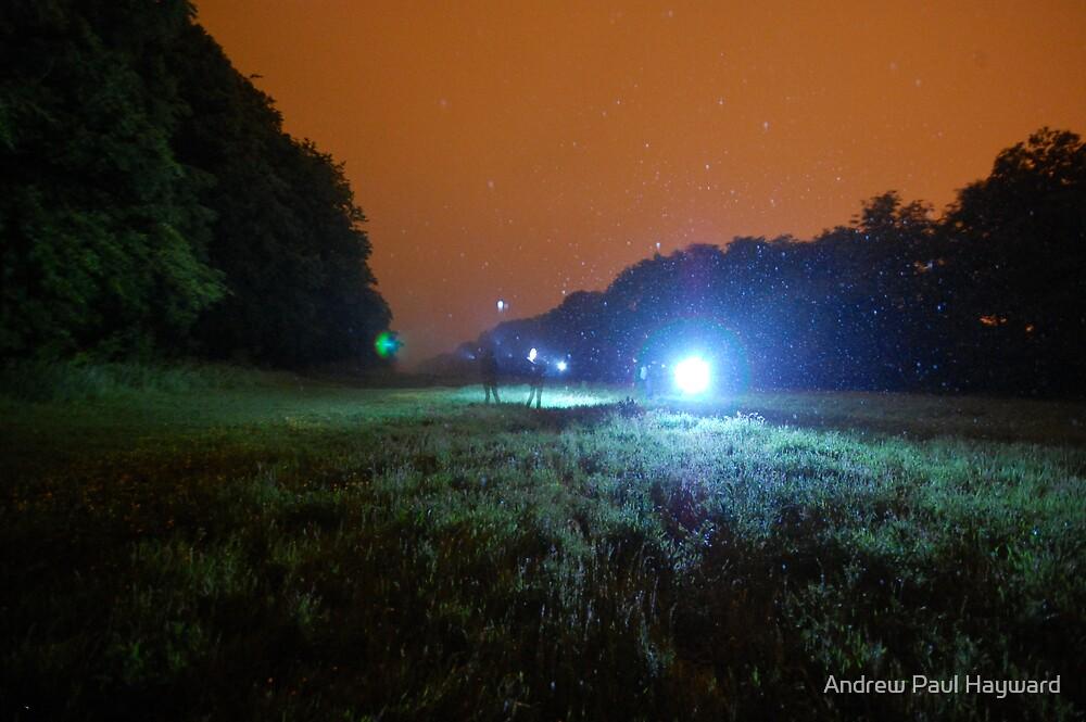 Dancing Lights by Andrew Paul Hayward