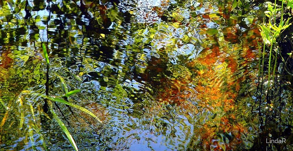 Water Colors... by LindaR
