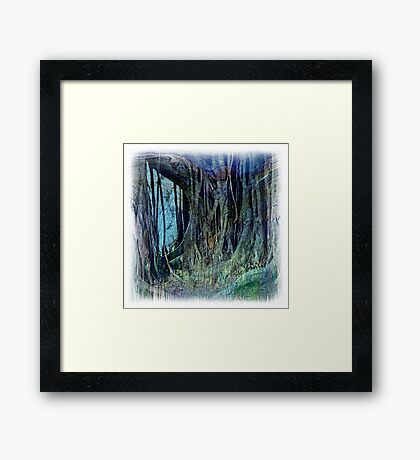 The Atlas Of Dreams - Color Plate 42 Framed Print
