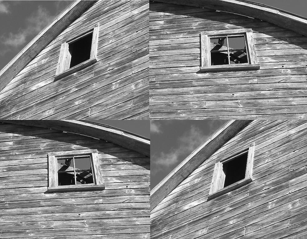 The Old Barn by babyangel