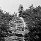 Graveyard Fields Upper Falls by Bill Wetmore