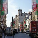 Cardiff by Steven Guy