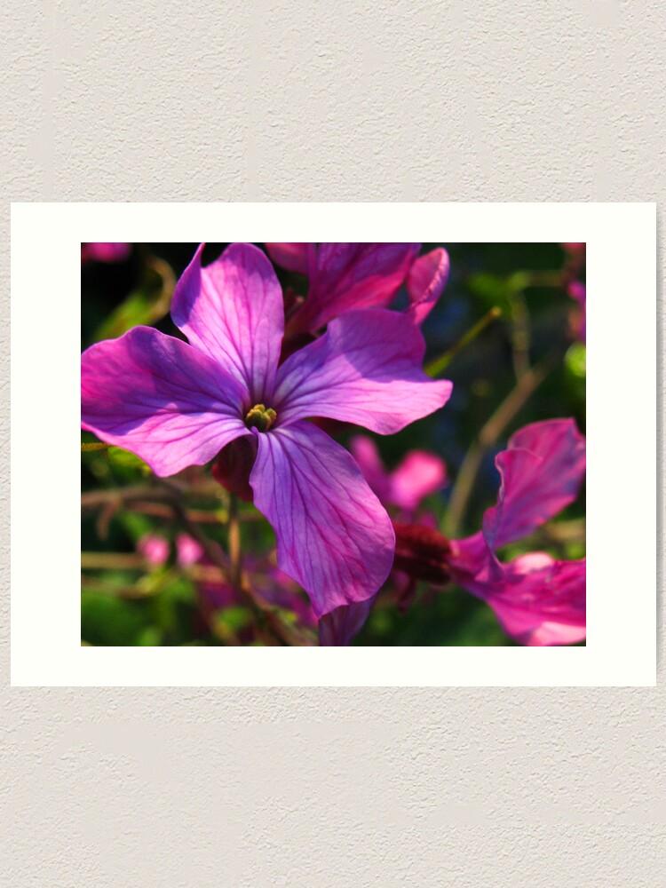 Alternate view of Flower Art Print