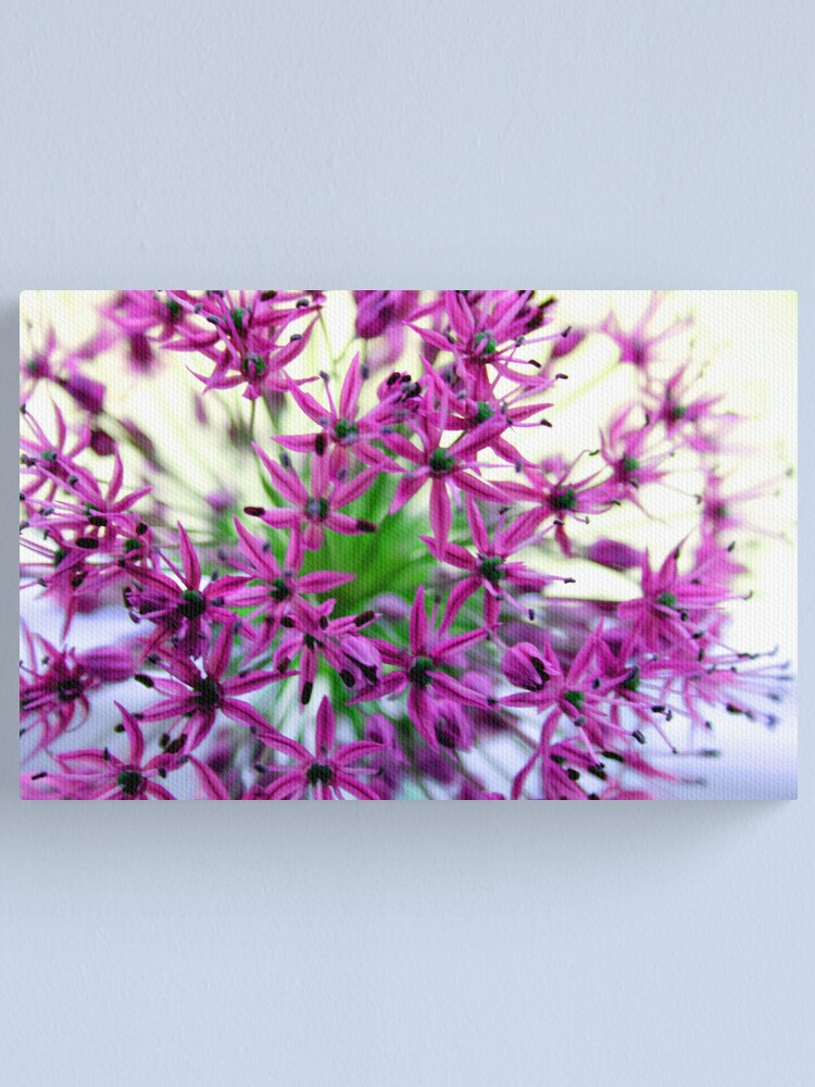 Alternate view of Efflorescent Explosion Canvas Print