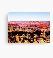 Desert in summer at Grand Canyon national park, USA Canvas Print