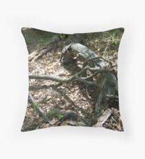 129 Throw Pillow