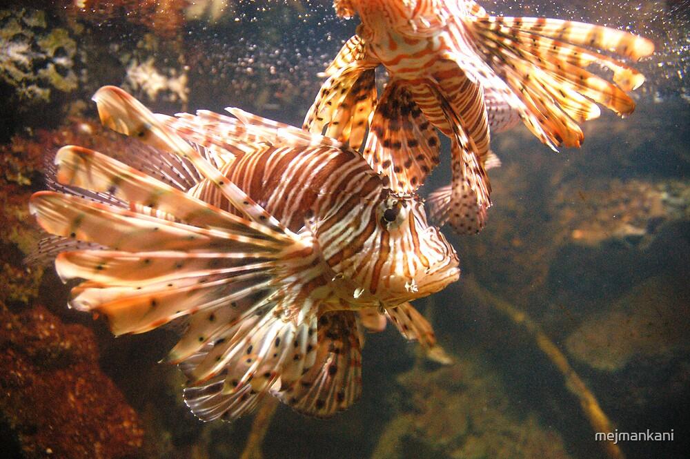 Underwater by mejmankani