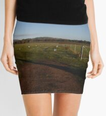 Farm Gate Mini Skirt