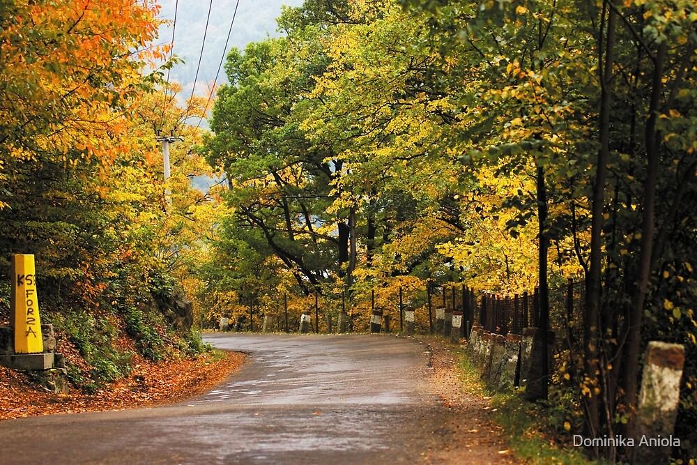 Autumn 15 by Dominika Aniola