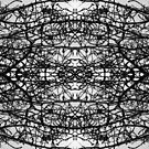 Thorns and branches abstract by Mel Brackstone