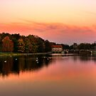 Sunset in autumn by Dominika Aniola