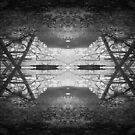 Mangrove abstract by Mel Brackstone