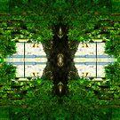 The trees by Mel Brackstone