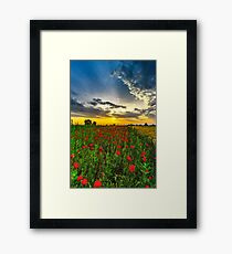 Colorful landscape at sunrise: sun, red poppies and blue sky, Alsace, France Framed Print