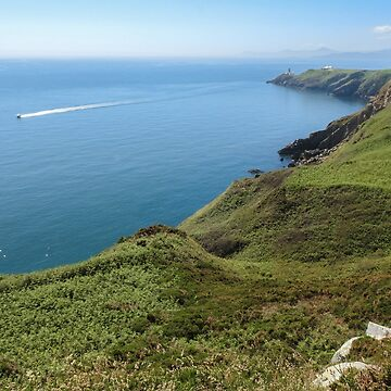 Howth Cliff Path Landscape by AmbraGallo
