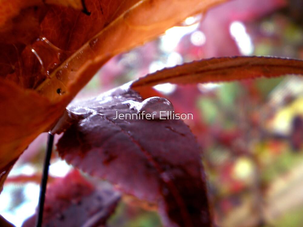 Autumn Rain 5 by Jennifer Ellison