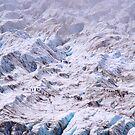 Walking on Fox Glacier, New Zealand by Elana Bailey