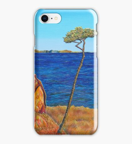 View from Portarlington iPhone Case/Skin