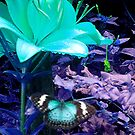 Butterfly Blue 2 by Martin Rolt