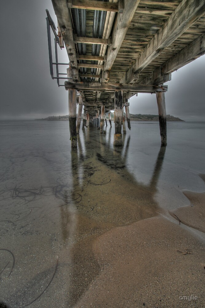 Under the Causeway by smylie