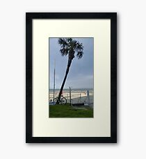 Daytona Shores Framed Print