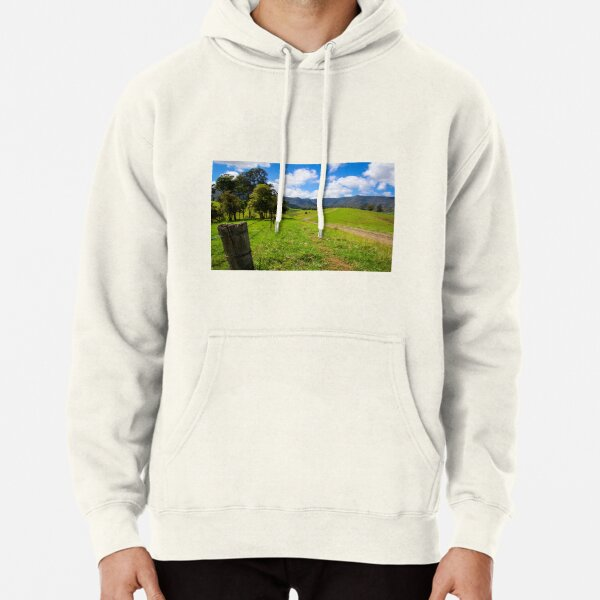 The fence Pullover Hoodie