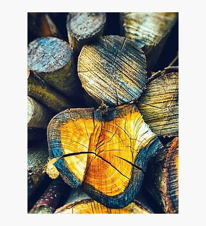 Lumbers Photographic Print