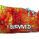 Funny I Survived US Heat Wave 2017  by IconicTee