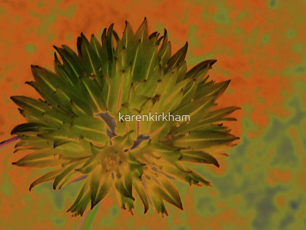 Flower of Chives  by karenkirkham