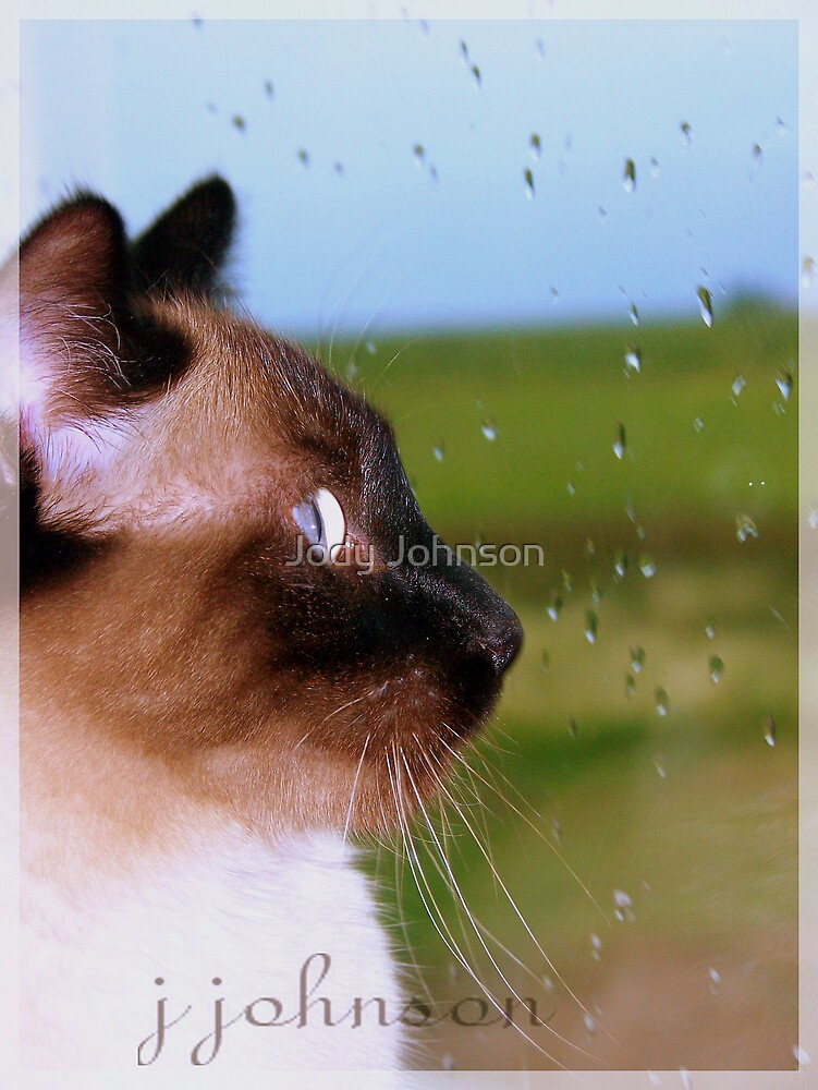 Looking out into the world by Jody Johnson