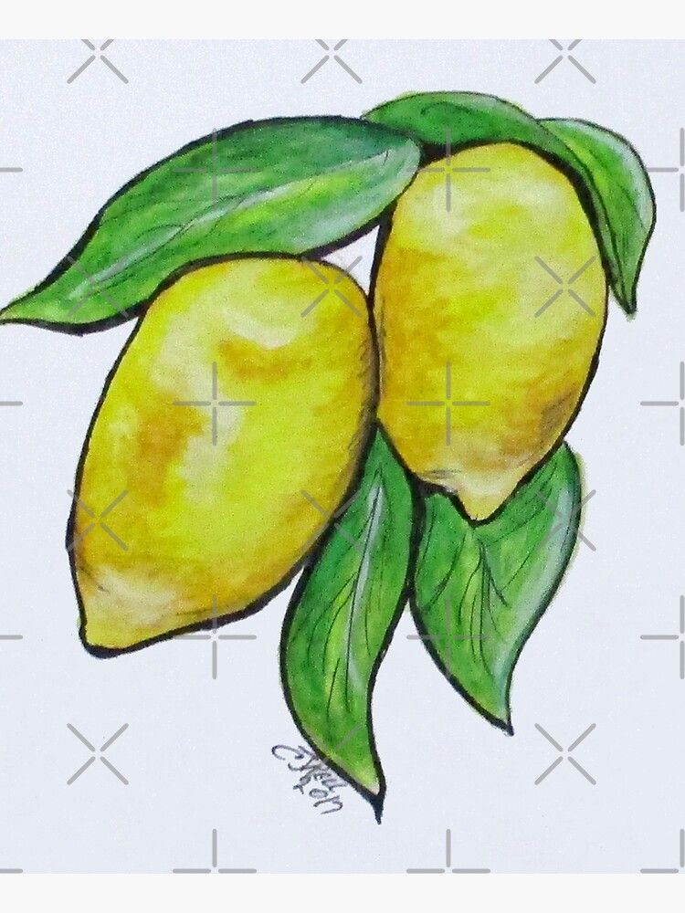 Two Lemons by cjkell