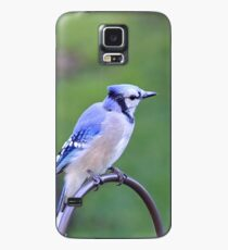 Resting Blue Jay Case/Skin for Samsung Galaxy