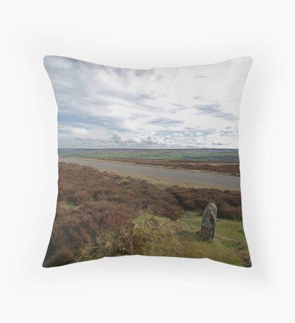 Danby Beacon Throw Pillow