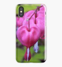 Fuchsia Bleeding Hearts iPhone Case