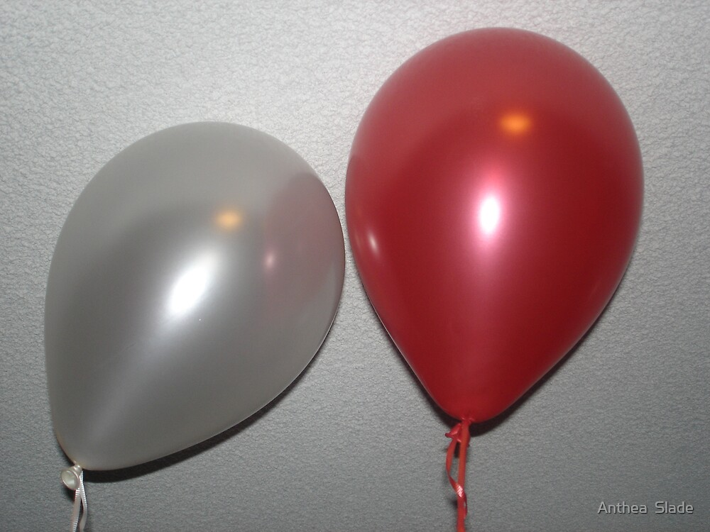 Mr & Mrs Balloon by Anthea  Slade