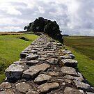 Hadrian's Wall by Steven Guy
