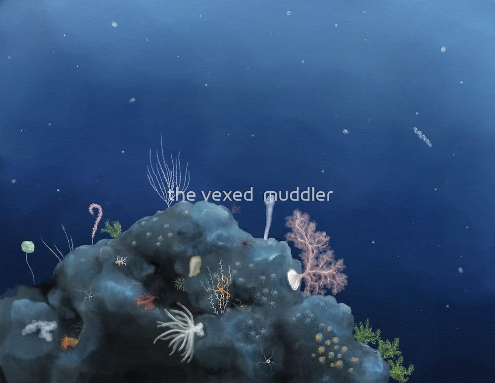 Deep ocean vista - Johnston Atoll by the vexed  muddler