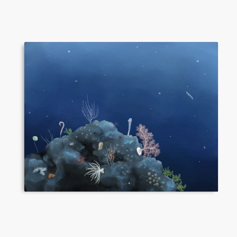 Deep ocean vista - Johnston Atoll Canvas Print